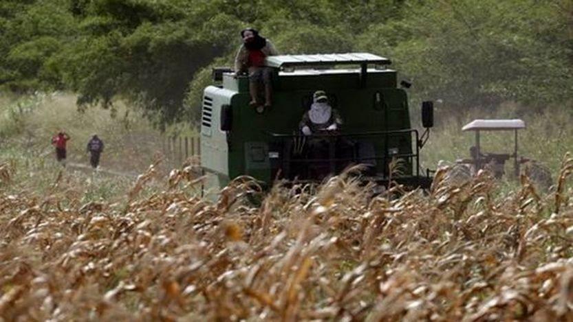 Lee más sobre el artículo Piden para mecanización agrícola $ 3 mil millones