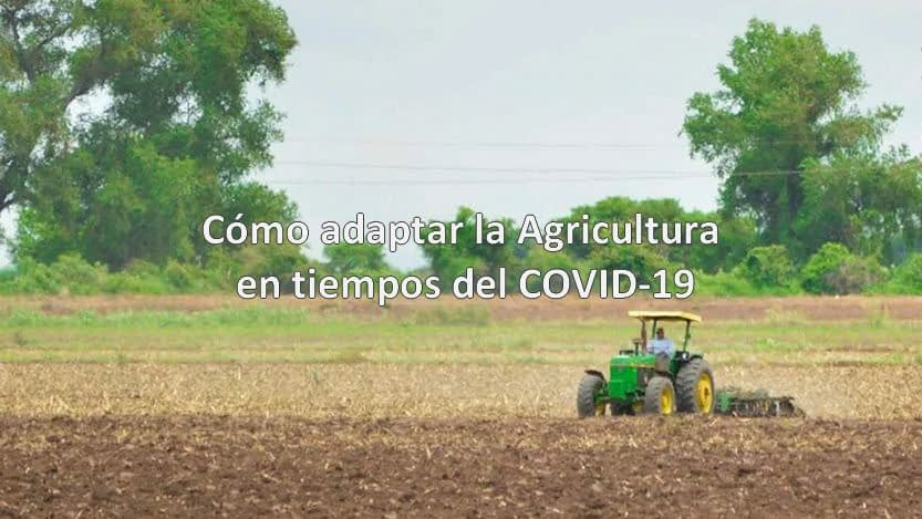 Lee más sobre el artículo Cómo adaptar la Agricultura en tiempos del COVID 19