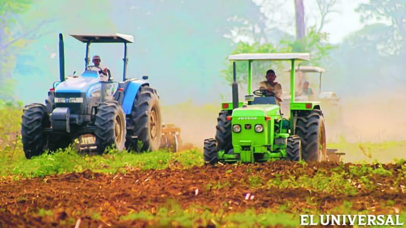 Sector agrícola reclama su inclusión en las subastas